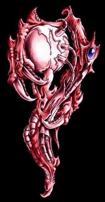 Биомеханика