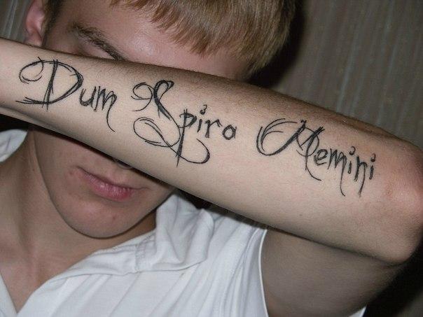 фразы на латыни