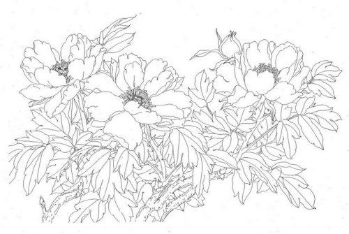 Sketchbook Asian Flowers | Japanese Tattoo Designs